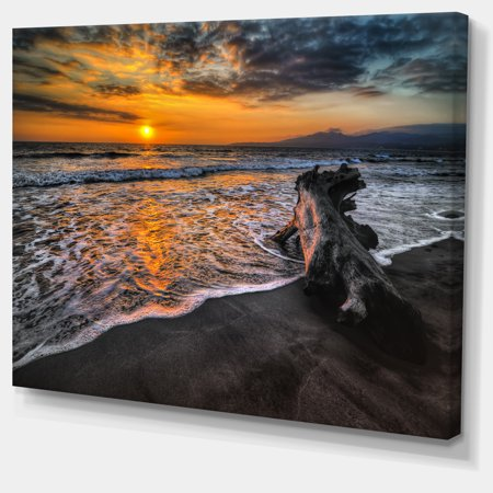 Log on Beach During Sunset - Seashore Canvas Art Print - image 1 de 4