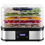 Best Fruit Dehydrators - Costway Food Dehydrator Preserver 5 Tray Fruit Vegetable Review