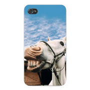 Apple Iphone Custom Case 4 4s Snap on - Funny White Horse Smiling Closeup