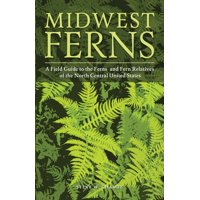 Midwest Ferns: A Field Guide to the Ferns and Fern Relatives of the North Central United States (Paperback)