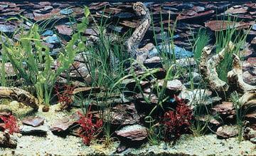 Penn-Plax Double Back Roll-A-Scene DB1 Aquarama Shalescape Aquarium Background, 50 feet Length x 12 Inch Width by Penn-Plax
