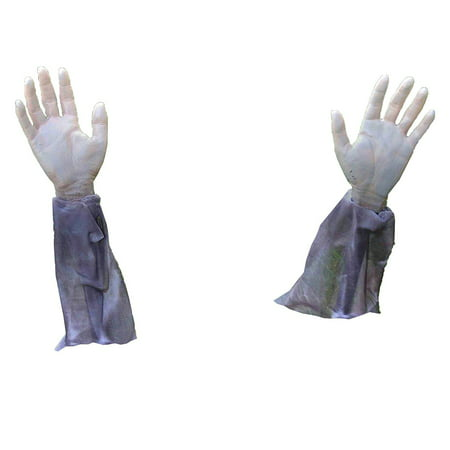 Forum Novelties Zombie Arm Lawn Stakes 2-Piece Halloween Graveyard Props](Halloween Projector Zombies)