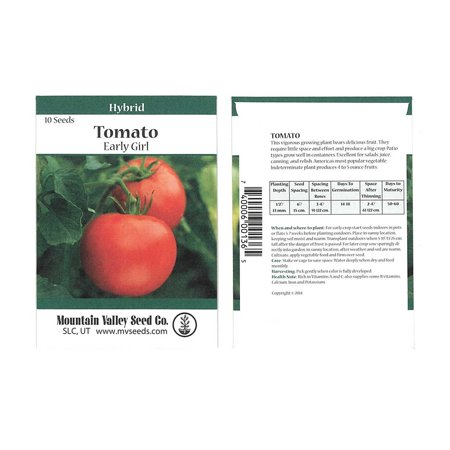 Girl Hybrid Tomato - Tomato Garden Seeds - Early Girl Hybrid - 10 Seed Packet - Non-GMO, Vegetable Gardening Seed
