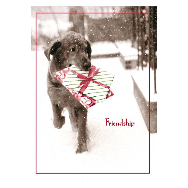 Avanti Press Christmas Cards, Friendship Is The Best Gift