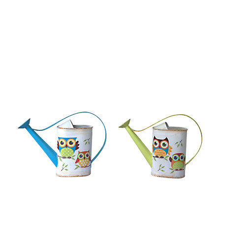 Attraction Design Home 2 Piece Garden Owl Watering Can Set by Attraction Design Home