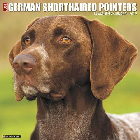 German Shorthaired Terrier (Just German Shorthaired Pointers 2019 Wall Calendar (Dog Breed Calendar))