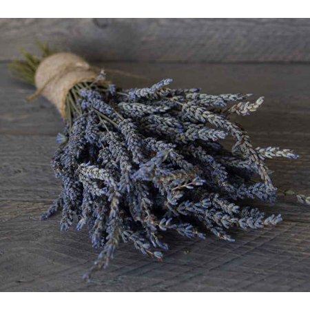 Grosso French Lavender bundle Blue 3-4 ounces stems 40-50 pieces -- Long stem single (Grosso Lavender)