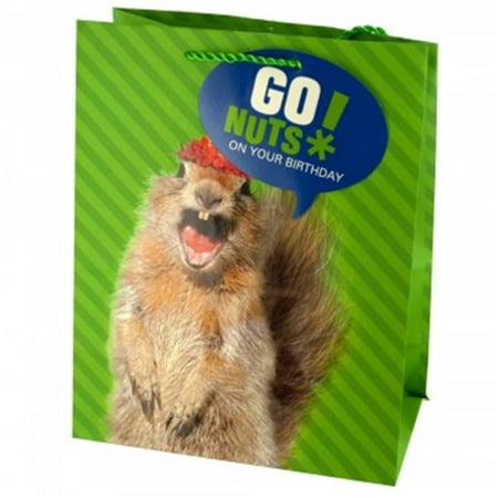 Bulk Buys BH463 36 Squirrel Birthday Gift Bag44 Medium