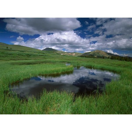 Cumulus clouds reflected in pond at Guanella Pass Arapaho National Forest Colorado Poster Print by Tim Fitzharris (9 x 12) (Passing Clouds Halloween)