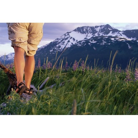 Female Hiker Standing On Log Along Turnagain Arm Ak Canvas Art - Michael DeYoung  Design Pics (34 x