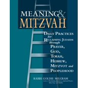 Meaning & Mitzvah : Daily Practices for Reclaiming Judaism Through Prayer, God, Torah, Hebrew, Mitzvot and Peoplehood