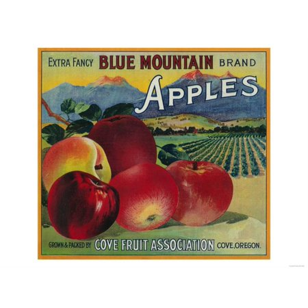 Blue Mountain Apple Crate Label - Cove, OR Print Wall Art By Lantern Press Blue Apple Crate Label