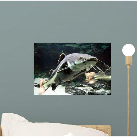 Big Catfish Wall Mural Decal Sticker, Wallmonkeys Peel & Stick Vinyl Graphic (12 in W x 8 in H)