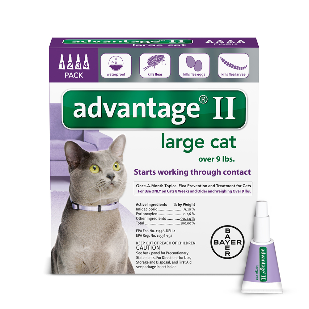 Advantage II Flea and Tick Treatment for Large Cats, 4 Monthly Treatments
