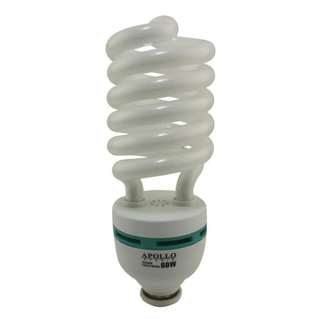 Apollo Studio 60 Watt CFL Compact Fluorescent Light Bulb - Color Spectrum 3200K (Fluorescent Light Spectrum)