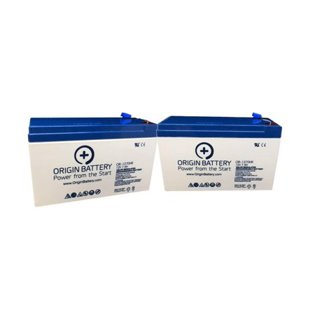 Schwinn Mini-e Battery Kit, Also Fits S200 Models