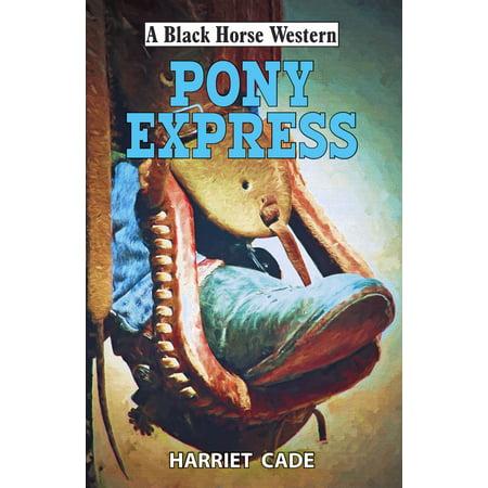 Pony Express - eBook Pony Express Race
