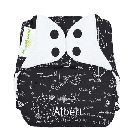 Freetime All-in-One Snap Diapers - Albert