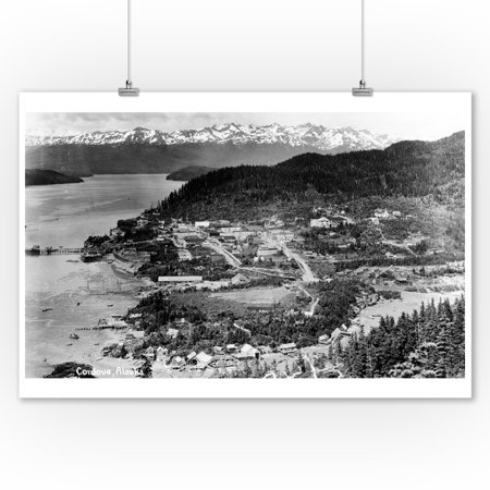 Alaska Aerial Photo - Cordova, Alaska - Aerial View of Town Photograph (9x12 Art Print, Wall Decor Travel Poster)