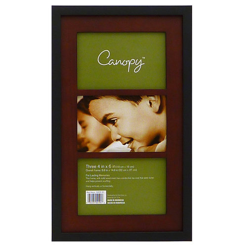 Canopy 3-Opening Collage Picture Frame