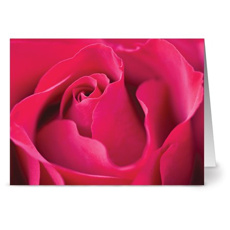 24 Floral Note Cards - A Rose By Any Other Name - Blank Cards - Yellow Envelopes Included