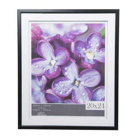 Gallery Solutions 20x24 Black Frame, Double Matted to 16x20 ...