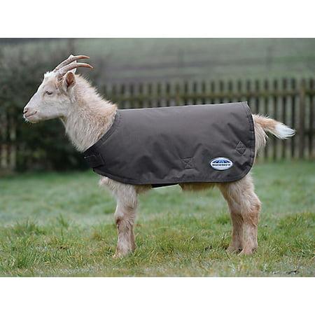 Weatherbeeta Goat Coat Small Navy