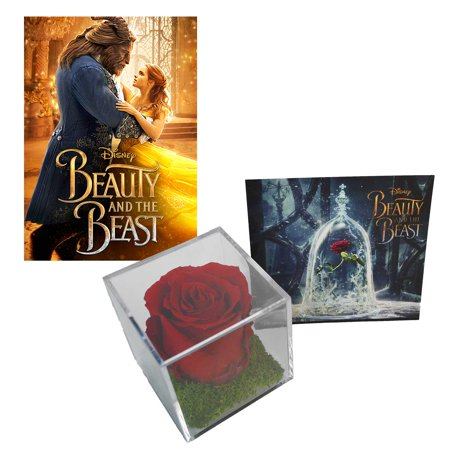 Beauty and the Beast (2017) Rose bundle - Luxe Bloom Rose w/ Beauty & the Beast Digital Movie
