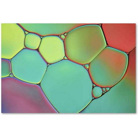 Trademark Fine Art 'Stained Glass III' Canvas Art by Cora Niele ()