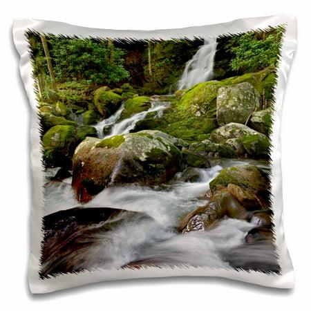 3dRose Mousecreek Waterfalls, Great Smoky Mountains, NC - US34 AJE0047 - Adam Jones - Pillow Case, 16 by - Halloween Nc Mountains