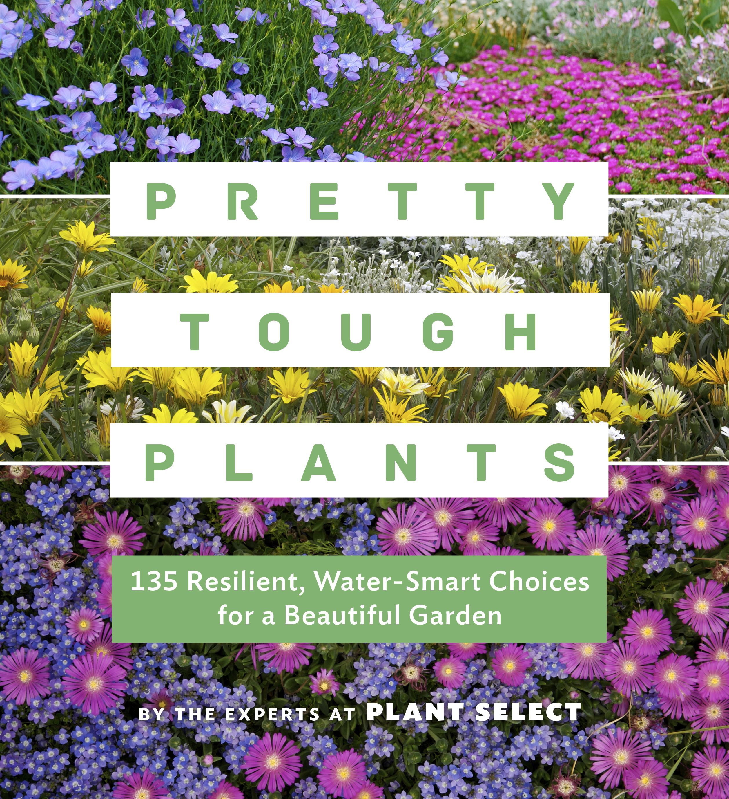 Pretty Tough Plants - Paperback