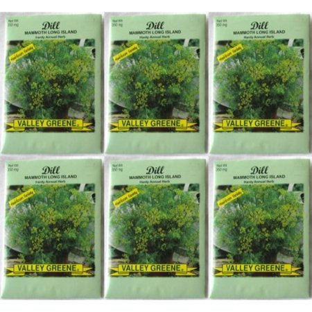 Valley Greene (6 Pack) 350 mg/Package Dill Mammoth Long Island Heirloom Variety Seeds ()
