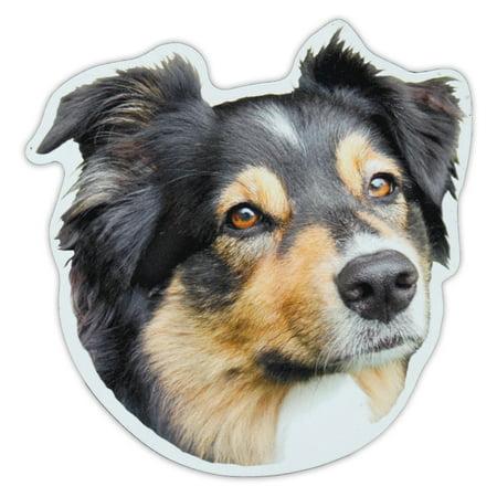 Magnetic Bumper Sticker - Australian Shepherd (Aussie) Dog Breed Picture Magnet - Cars, Trucks, SUVs, Etc. (Australia Bumper Sticker)