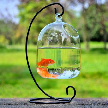 Hanging Bubble Aquarium Fish Glass Vase Pot Tank Hydroponic Plant Home Decoration 16x10cm ()
