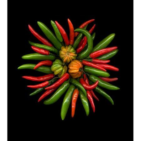 Winston Porter 'Hot Peppers #1' Photographic Print - Walmart com