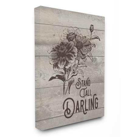 The Stupell Home Decor Collection Stand Tall Darling Vintage Daisy Canvas Wall Art