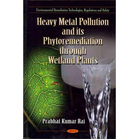 Heavy Metal Pollution & its Phytoremediation Through Wetland