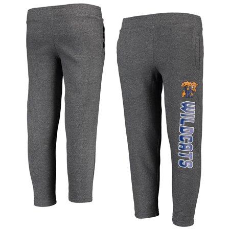 Youth Heathered Gray Kentucky Wildcats Fleece Pants