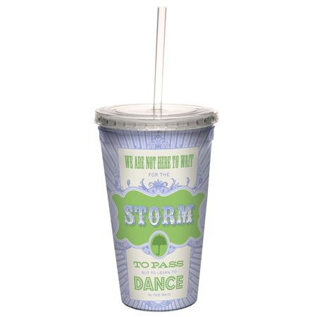 Tree Free Greetings 98184 Angi And Silas Passing Storms Double Walled Cool Cup With Reusable Straw  16 Ounce