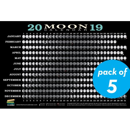 2019 Moon Calendar Card (5 pack) : Lunar Phases, Eclipses, and More! - Halloween Moon Phase 2017