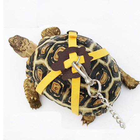 Leather Harness Strap for Tortoise / Turtle Pet Walking Lead Control Rope Chest Collar