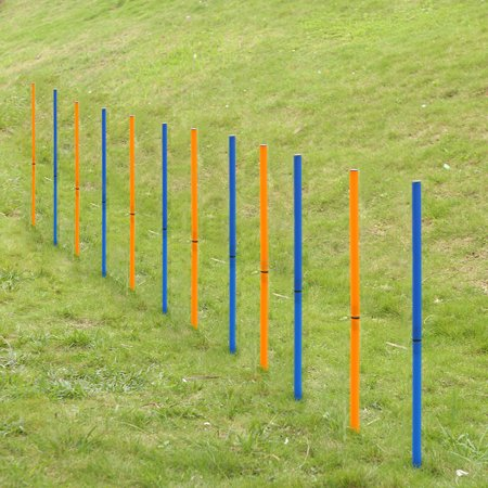 Pet Outdoor Dog Agility Sports Training Poles Equipment Dogs Activity Agility Weave Slalom 12 Pole Set with Carrying Case