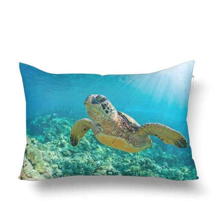 GCKG Sea Turtle Coral Reef Ocean Water Underwater Pillow Cases Pillowcase 20x30 inches - image 4 de 4