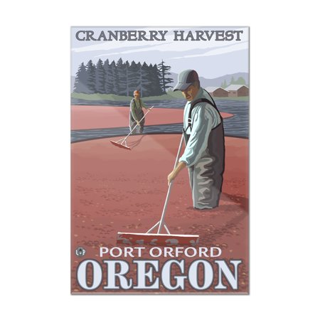Cranberry Bogs Harvest - Port Orford, Oregon - LP Original Poster (8x12 Acrylic Wall Art Gallery Quality) ()