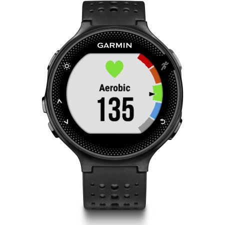 Garmin Forerunner 235 Smartwatch - Black/Gray