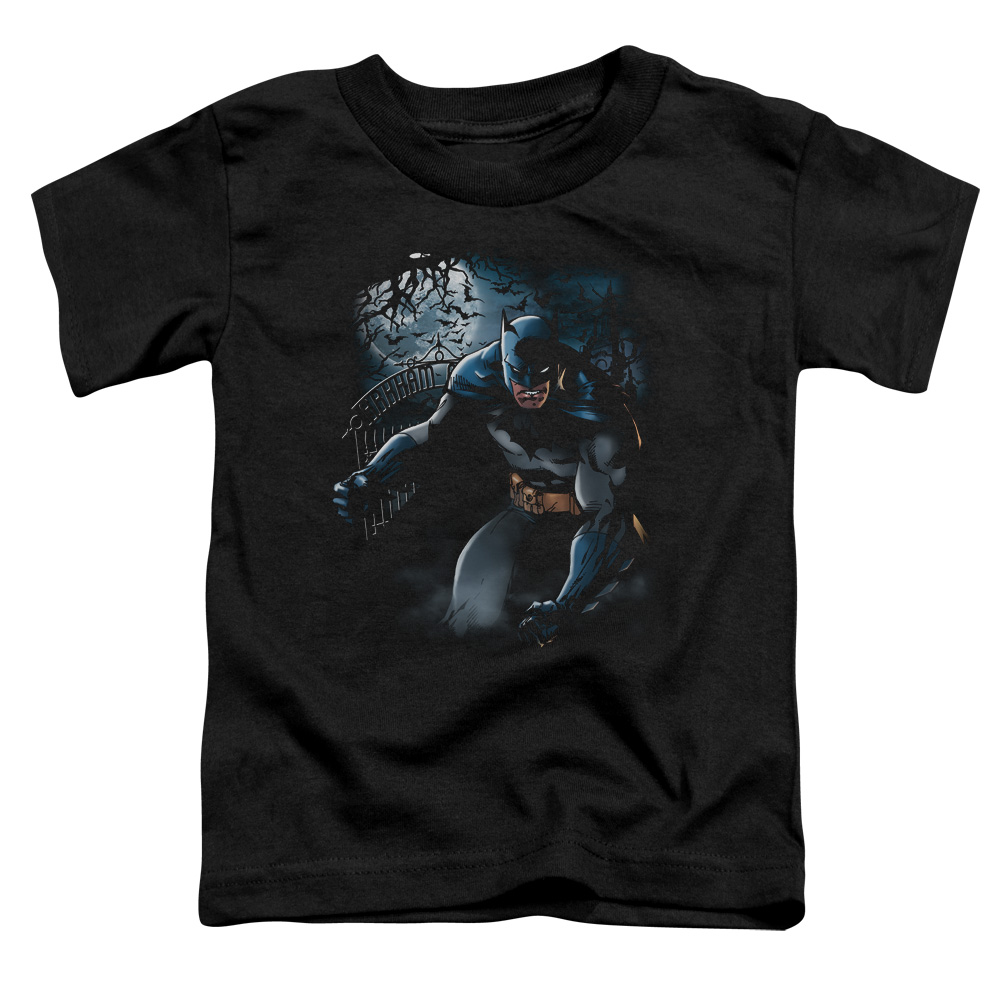 Batman/Light Of The Moon   S/S Toddler Tee   Black      Bm1886