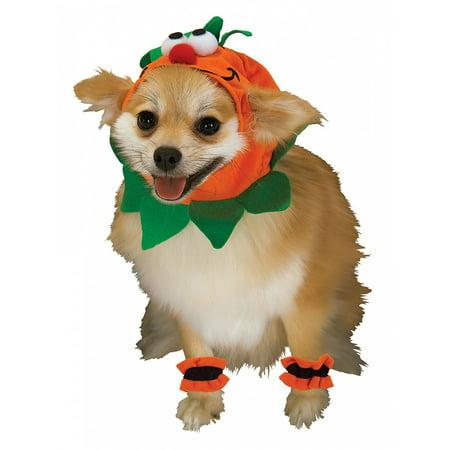 Spooky Pet Set Pet Costume Pumpkin - Medium](Pumpkin Dog Costumes)
