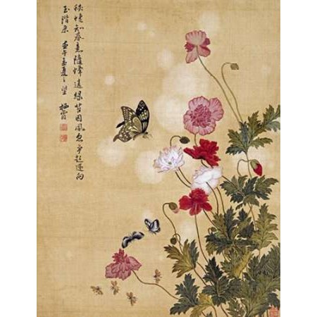 Corn Poppy and Butterflies Rolled Canvas Art - Ma Yuanyu (11 x 14) - Corn Roll