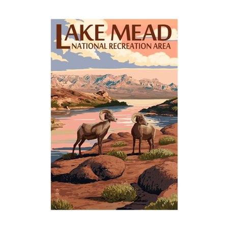 Lake Mead - National Recreation Area - Bighorn Sheep Print Wall Art By Lantern (Bighorn Sheep Pictures)