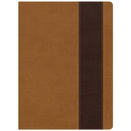 holman study bible nkjv pdf